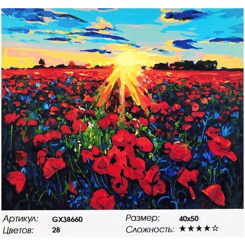 Картина по номерам/Paintboy/Маковое поле 40*50 картина по номерам flamingo маковое поле 3991234 40 х 50 см