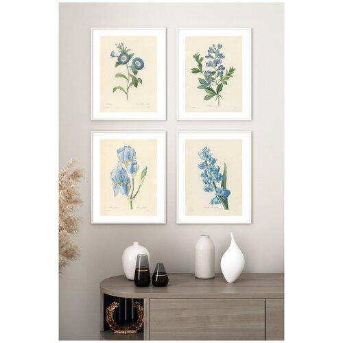 Постеры на стену для интерьера Postermarkt Набор постеров Ботаническая иллюстрация цветов №1, постеры в белой рамке, размер 40х50 см, постеры картины для интерьера