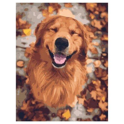 Купить Картина по номерам на холсте Paintboy Улыбчивый пес , 40х50 см, GX-48008, Картины по номерам и контурам