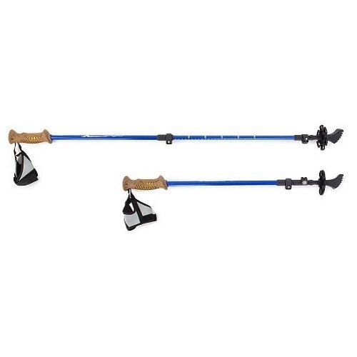 Фото - Палки для скандинавской ходьбы Larsen Extreme Blue раздвижные 70-140см (3х секционные) в чехле палки для скандинавской ходьбы larsen camping