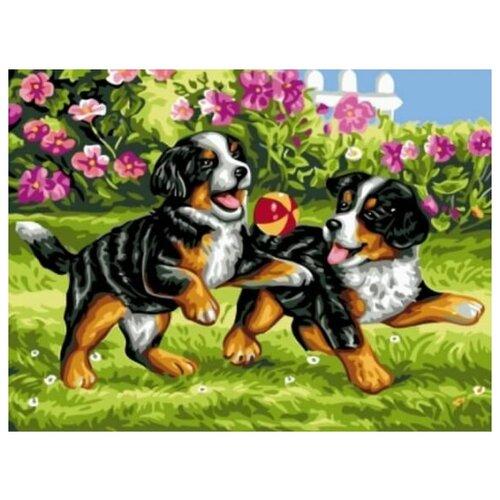 Купить Картина по номерам Цветной «Озорные щенки» (холст на подрамнике, 30х40 см), Картины по номерам и контурам