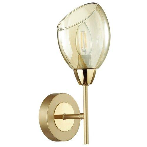 Светильник настенный Lumion Moderni, 4536/1W, 40W, E14 настенный светильник lumion lacie 4536 1w