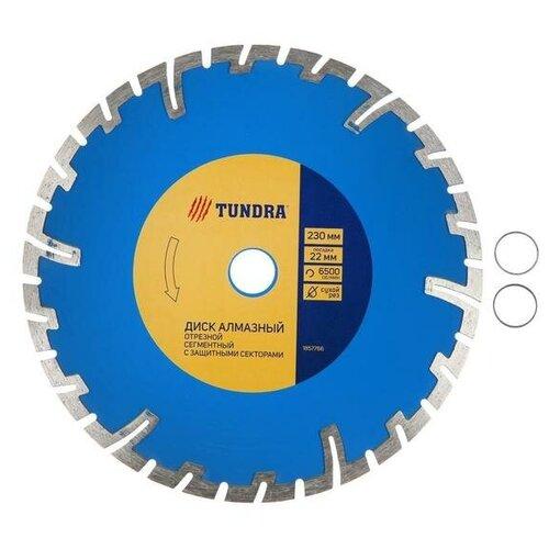 Диск алмазный отрезной TUNDRA, сегментный с защитными секторами, сухой рез, 230 х 22 мм
