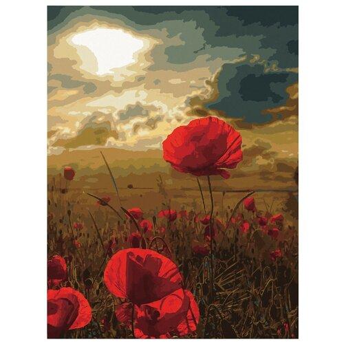 Остров сокровищ картина по номерам Маковое поле, 50 х 40 см картина по номерам flamingo маковое поле 3991234 40 х 50 см
