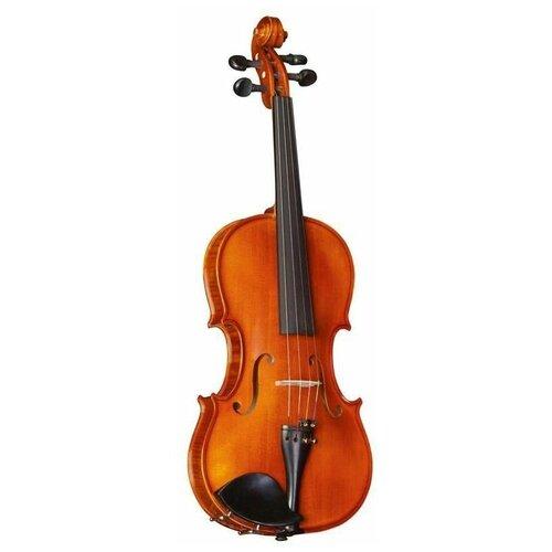 Скрипка Strunal 175wA-3/4