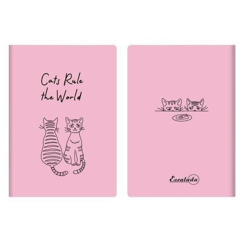 Фото - Записная книжка, А6+, 60 листов, цвет: розовый записная книжка феникс а6 102 148мм