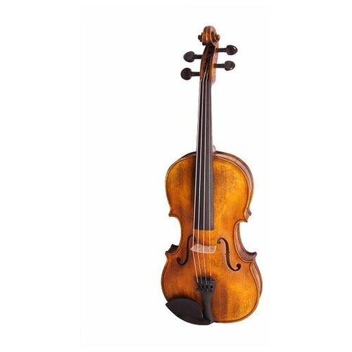 Скрипка Strunal 176-4/4