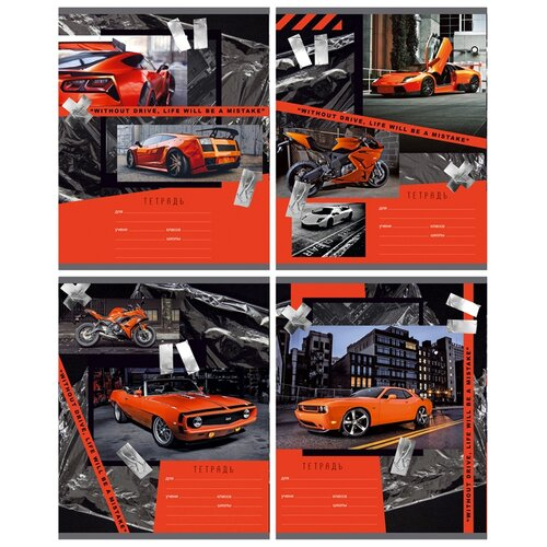 BG Упаковка тетрадей Drive Т5ск18 8331, 12 шт., клетка, 18 л., оранжевый
