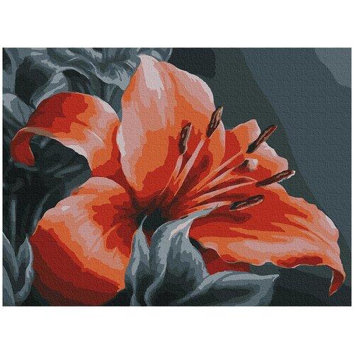Фото - Картина по номерам с цветной схемой на холсте Molly арт.KK0669 Оранжевая лилия 30х40 см картина по номерам с цветной схемой на холсте 30х40 кот рокер 19 цветов kk0610