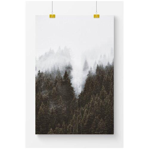 Постер для интерьера Postermarkt Темный лес и туман, 60х90 см, в тубусе