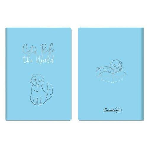 Фото - Записная книжка, А6+, 60 листов, цвет: голубой записная книжка феникс а6 102 148мм