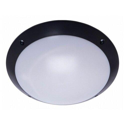 Настенно-потолочные светильники Feron 41358