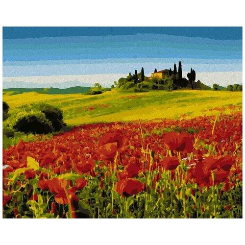 Картина по номерам Маковое поле, 40x50 см картина по номерам flamingo маковое поле 3991234 40 х 50 см