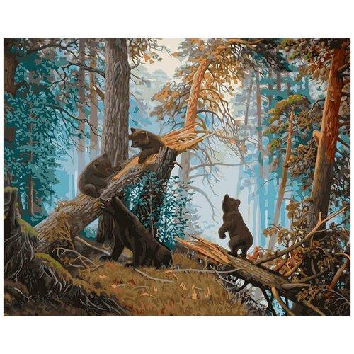 Купить Картина по номерам фрея Утро в сосновом лесу 40х50 см, ФРЕЯ, Картины по номерам и контурам