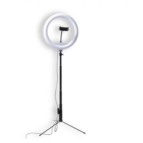 Fujimi FJL-RING12M Кольцевая лампа для БЬЮТИ съемок
