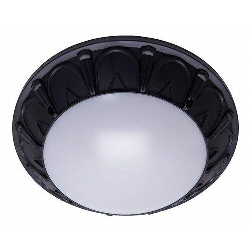 Настенно-потолочные светильники Feron 41361