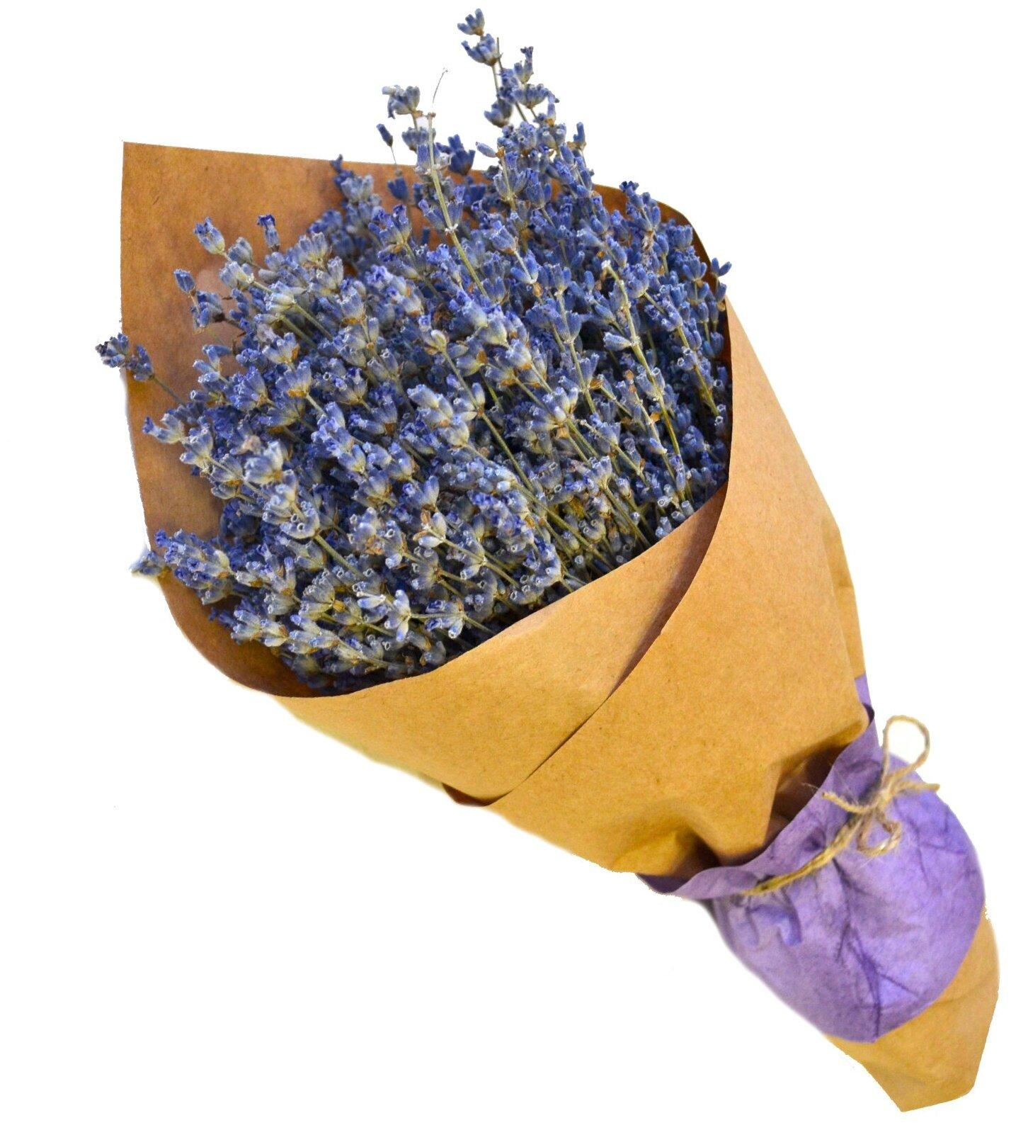 Лаванда - букет сухоцветов — купить по выгодной цене на Яндекс.Маркете