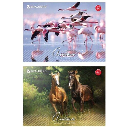 Купить Альбом для рисования, А4, 32 листа, скоба, обложка картон, BRAUBERG, 200х283 мм, Живая природа (2 вида), 103683, Альбомы для рисования