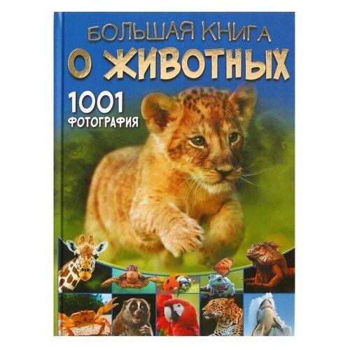 барановская и ермакович д моя первая большая книга о динозаврах Большая книга о животных. 1001 фотография. Ермакович Д. И.