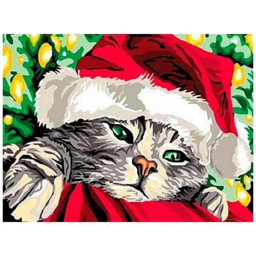 Купить Картина по номерам Paintboy «Санта-кот» (холст на подрамнике, 30х40 см), Картины по номерам и контурам