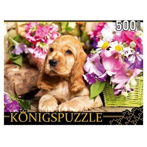 Рыжий Кот Пазл Konigspuzzle 500 деталей: Щенок Английского кокер-спаниеля
