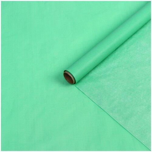 Бумага упаковочная тишью, хаки, 0,6 х 10 м