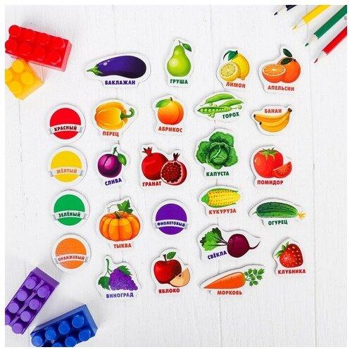Лесная мастерская Развивающие магниты Изучаем цвета и овощи - фрукты, 25 шт обучающий набор лесная мастерская изучаем цвета и овощи фрукты 3622858 разноцветный
