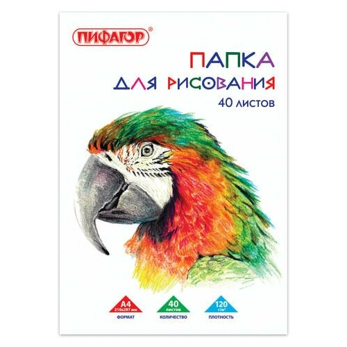 Фото - Папка для рисования, А4, 40 л., 120 г/м2, пифагор, 210х297 мм, Попугай, 129222 папка для рисования большого формата а3 20 л 120 г м2 пифагор 297х420 мм зебры 129218