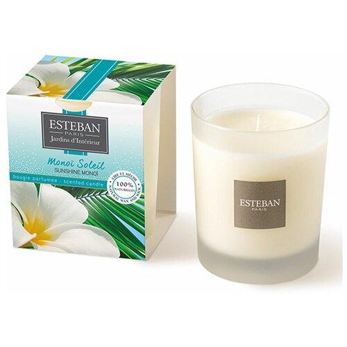 Ароматическая свеча Esteban цветок таити