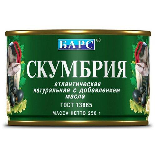 Рыбные консервы Барс скумбрия атлантическая НДМ, 250г 2 шт. недорого