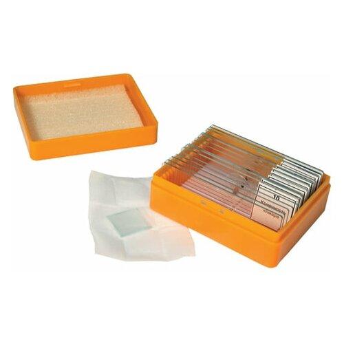 Набор готовых микропрепаратов LEVENHUK N10 NG (10 образцов стекла) 29279 1 шт.
