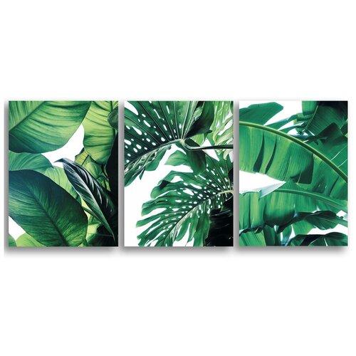 Комплект картин на холсте LOFTime 3 шт 30Х40 тропические растения 4 К-78-3040