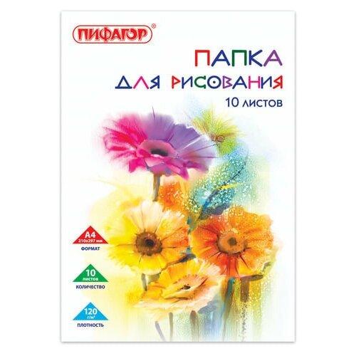 Фото - Папка для рисования, А4, 10 л., 120 г/м2, пифагор, 210х297 мм, Цветы, 129220 папка для рисования большого формата а3 20 л 120 г м2 пифагор 297х420 мм зебры 129218