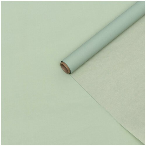 Бумага упаковочная тишью двухстороняя, кремовая-хаки, 0,6 х 10 м
