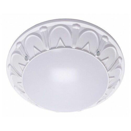 Настенно-потолочные светильники Feron 41360