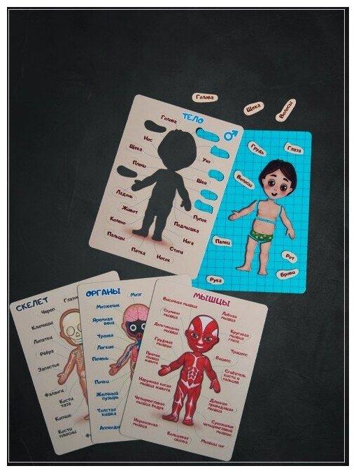 """Магнитная детская настольная развивающая игра-пазл """"Как устроен человек - тело, скелет, анатомия"""" для мальчика - Notta & Belle — купить по выгодной цене на Яндекс.Маркете"""