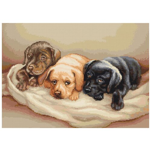 Фото - Набор для вышивания,Три собачки, Luca-S 35 x 25,5 см ( B434 ) набор для вышивания улитка luca s 9 5 x 5 см b005