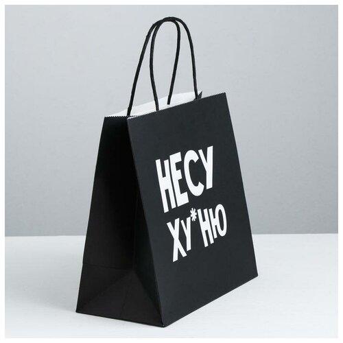 Пакет подарочный «Несу Ху*ню», 22 х 22 х 11 см 3907834