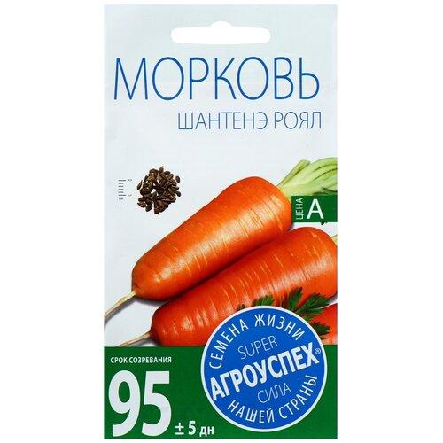 Фото - Семена Морковь Шантане Роял среднеранняя, 2г семена василек букетная смесь 2г