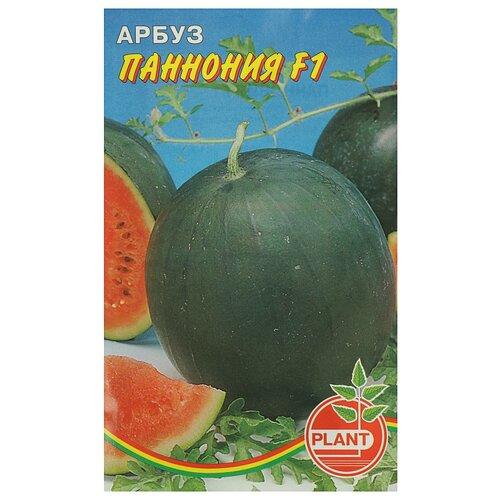 Семена Арбуз