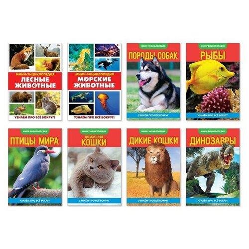 Фото - Буква-ленд Мини-энциклопедии «Узнаём про всё вокруг. Живая природа», (набор 8 шт) природа россии узнаём играем многоразовые наклейки
