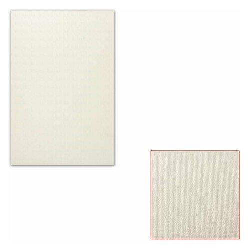 Картон белый грунтованный для масляной живописи, 20х30 см, односторонний, толщина 0,9 мм, масляный грунт картон грунтованный подольские товары для художников для масляной живописи 50 х 70 см 4610003280871