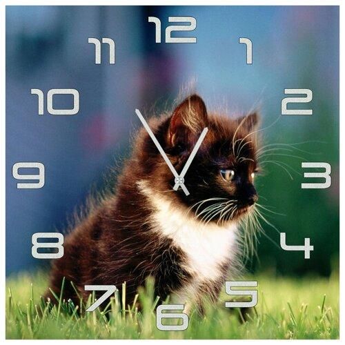 SvS Настенные часы SvS 3501846 Черно-белый котенок
