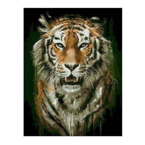 PaintBoy Картина по номерам Гневный взгляд 40x50 см (PK68097)