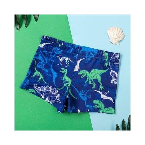 Купить Плавки Kaftan размер 122-128, синий, Белье и пляжная мода