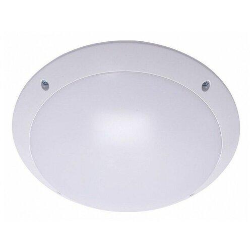 Настенно-потолочные светильники Feron 41359