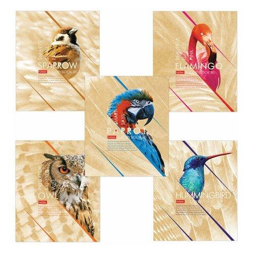 Фото - Тетрадь А5, 80 л., HATBER, скоба, клетка, выборочный лак, Birds (5 видов), 80Т5вмВ1 тетрадь а5 48 л пзбм скоба клетка конгрев выборочный twin лак валяй 5 видов 027402