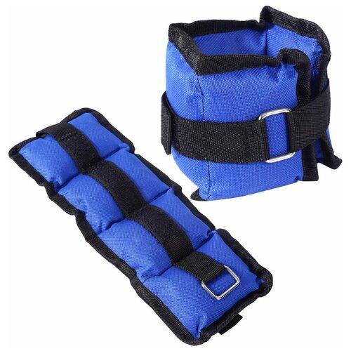 B32115 Утяжелители 2 кг (2х1,0кг) (нейлон) (синий) утяжелители torneo 2 х 2 кг