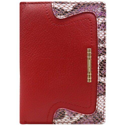 Обложка для паспорта Loui Vearner 19-2045B