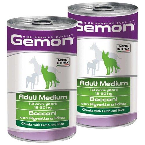 Влажный корм для собак Gemon ягненок, с рисом 2 шт. х 1.25 кг (для средних пород)